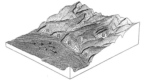 Abb. 31.1 Topologische Relationen (aus Bollmann 1992): Benachbartsein (B), räumliche Trennung (T), Reihenfolge (R), Umgebensein (U), Kontinuität (K)