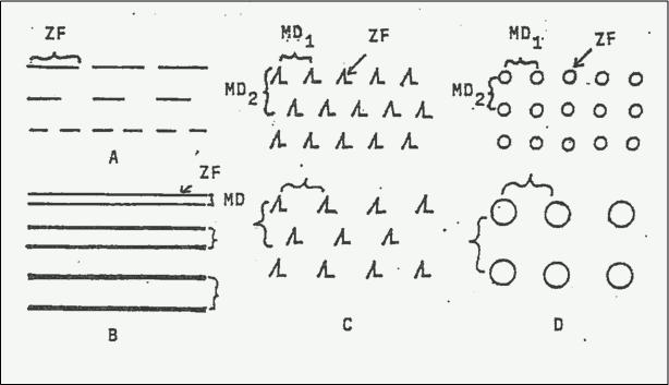 Abb. 33.11 Zeichenmuster (A – D) mit Zeichenfigur (ZF) und Musterdistanz (MD)