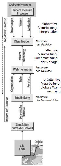 Abb.32.1a Prozessmodell der Wahrnehmung (verändert nach Zimbardo 1995 u. Heidmann 2001)